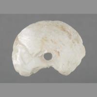 Stone: shard