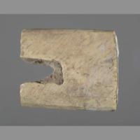 Bone: fragment